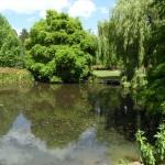 Úspešný výlet do Richmond Park